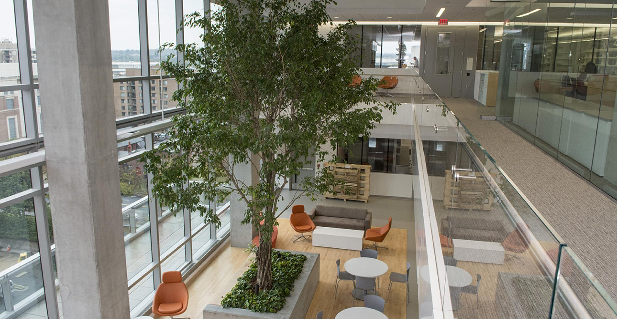 Photo of the GW Cancer Center Lab common area