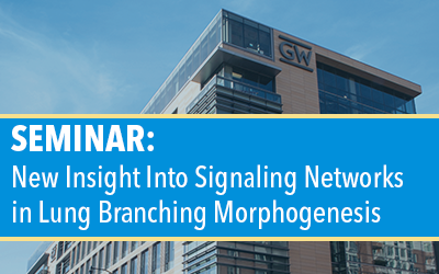 Seminar: New Insight Into Signaling Networks in Lung Branching Morphogenesis