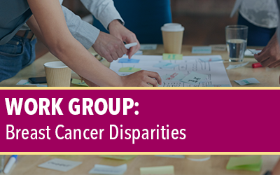 Breast Cancer Disparities Work Group